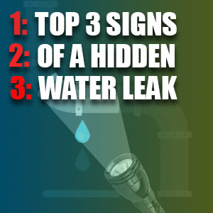 Top 3 Signs of a Hidden Water Leak