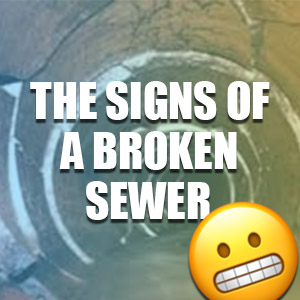 What Are the Signs of a Broken Sewer Pipe?