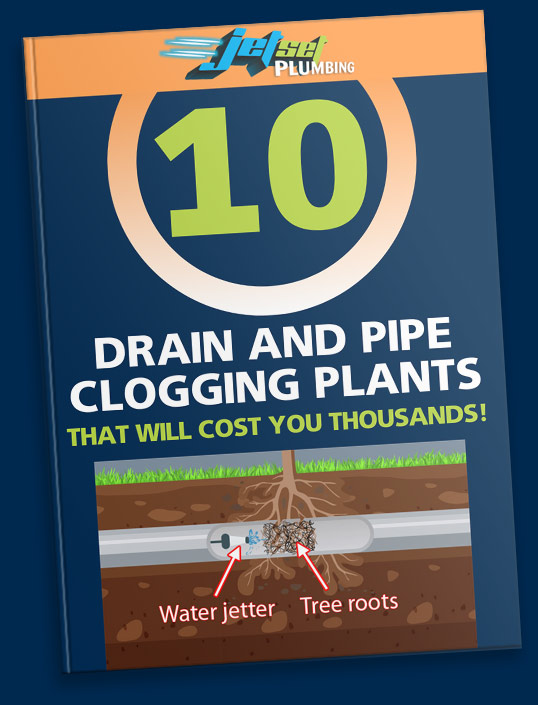 10 Drain And Pipe Clogging Plants That Will Cost You Thousands Book