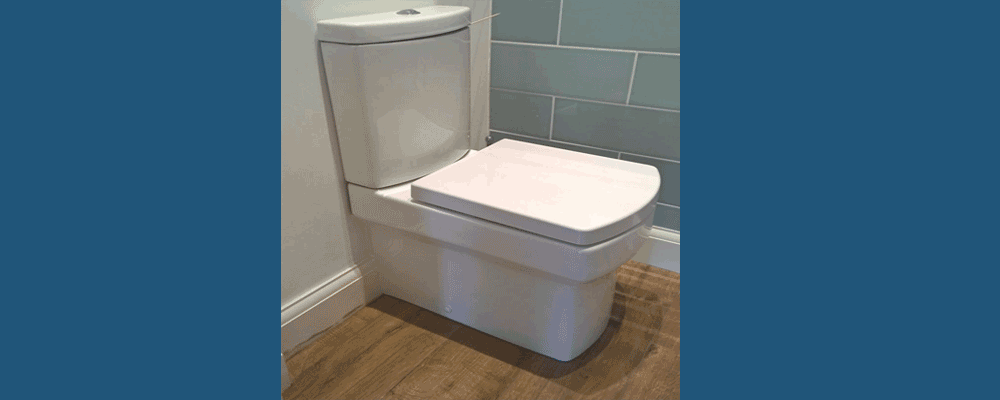 Hidden Toilet Leaks costs