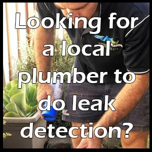 Looking for a local plumber to do leak detection?