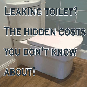 Leaking toilet? The Hidden Costs You Don't Know About!