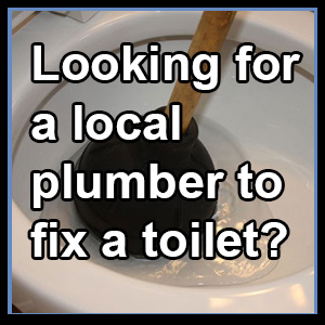 Looking for a local plumber to fix a toilet?